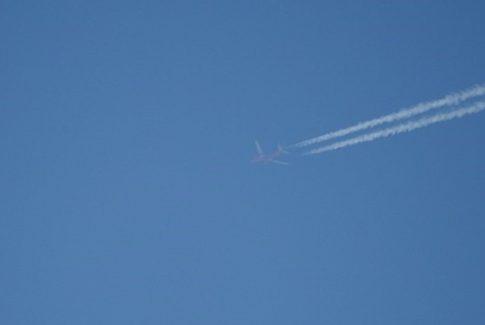 fly stripe