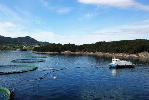 Bremnes seashore elektrisk oppdrettsanlegg